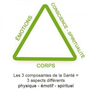 Triangle_composants_sante